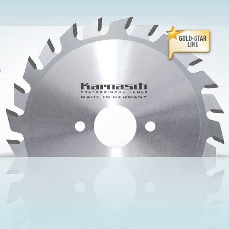 Hartmetall-bestücktes Kreissägeblatt Ritzer 2-teilig 120x3,8x50 2x12 WZ